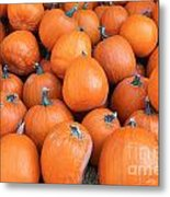 Piles Of Pumpkins Metal Print