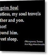 Pilgrim Soul Metal Print by Ann Kipp