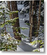 Pillows On Evergreen Metal Print