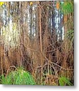 Pine Jungle Metal Print