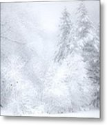 Pine Trees And Bluebirds Metal Print