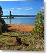 Pine Trees In Lake Almanor Metal Print