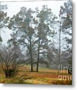 Pine Trees In Mist - Digital Paint 1 Metal Print