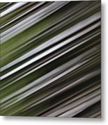 Pine Woods Sweep Metal Print