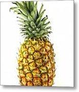Pineapple Metal Print by Blink Images