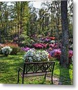 Pinecrest Gardens Metal Print