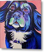 Pink And Blue Dog Metal Print