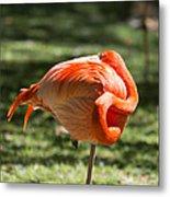 Pink And Orange Ball Metal Print