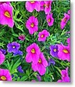 Pink And Purple Petunias Metal Print