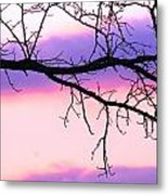 Pink And Purple Sunset Metal Print