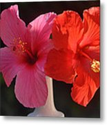 Pink And Red Hibiscus Metal Print