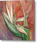 Pink Bird Of Paradise Metal Print by Anais DelaVega