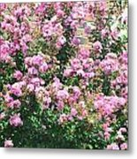 Pink Bush Metal Print