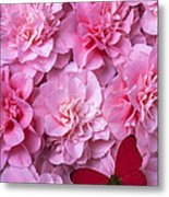 Pink Camilla's And Red Butterfly Metal Print