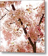 Pink Cherry Blossoms - Impressions Of Spring Metal Print