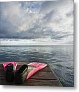Pink Fins On Dock Metal Print
