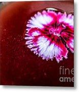 Pink Flower In Red Wine Cocktail Metal Print
