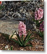 Pink Flower's With A Lime Stone Rock Metal Print