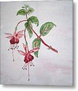 Pink Fuchsia's  Metal Print