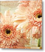 Pink Gerber Daisies 3 Metal Print