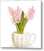 Pink Hyacinths Metal Print