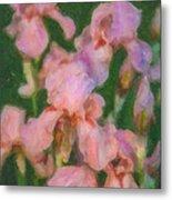 Pink Iris Family Metal Print
