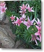 Pink Lilys Metal Print