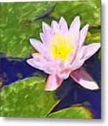 Pink Lotus At Waikoloa Metal Print