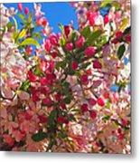 Pink Magnolia Metal Print by Joann Vitali