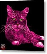 Pink Maine Coon Cat - 3926 - Bb Metal Print