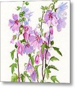 Pink Mallow Flowers Metal Print