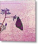 Pink Monarch Metal Print