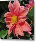 Pink Orange Center Flower Metal Print
