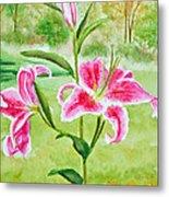 Pink Oriental Lillies Metal Print