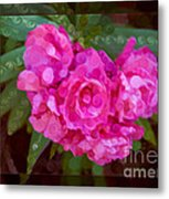 Pink Plumeria Abstract Flower Painting Metal Print