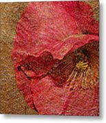 Pink Poppy Gold Leaf Metal Print