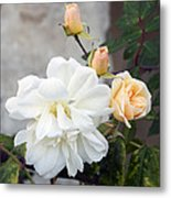Pink Rose Buds At Carmel By The Sea Mission Metal Print