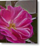 Pink Rose Digital Art 2 Metal Print
