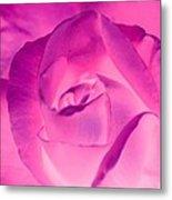 Pink Rose - Photopower 1790 Metal Print