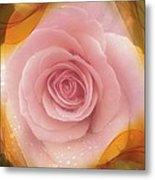 Pink Rose Romance  Metal Print
