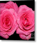Pink Roses With Brush Stroke Effects Metal Print