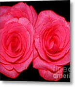 Pink Roses With Colored Edges Effects Metal Print