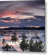 Pink Sunset At The Lake Metal Print