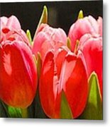 Pink Tulips In A Row Metal Print
