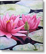 Pink Waterlilies Metal Print