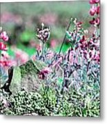 Pink Wildflowers Metal Print