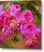 Pink Winter Roses Three Metal Print