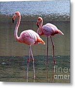 Pinkest Flamingo Metal Print
