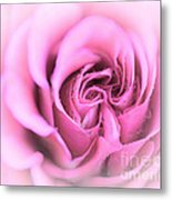 Pinkness Metal Print