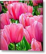 Pinks My Color Metal Print